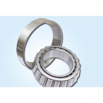 Loyal NU311ECP Atlas air compressor bearing
